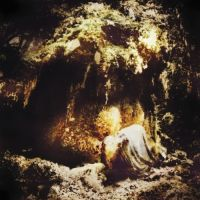 Wolves in the Throne Room - Celestial Lineage; levynkansi