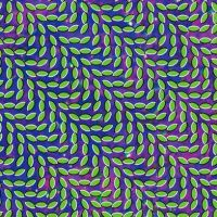 Animal Collective - Merriweather Post Pavillion; levynkansi