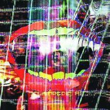 Animal Collective - Centipede Hz; levynkansi