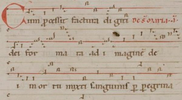 Cum processit facturan neumit Hildegardin teoksesta Riesencodex (n. 1175-1190)