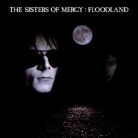 The Sisters of Mercy: Floodland (levyn kansikuva)